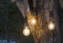 GARDEN: Twinkle, Twinkle / Garden Lighting