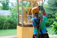 Asheville Canopy Tours / http://wildwaterrafting.com/ashevillezip.php