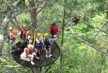 Ocoee Canopy Tours / Ocoee River Basin Canopy Tours; http://wildwaterrafting.com/ocozip.php