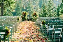 wedding / wedding plans