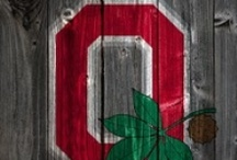 Scarlet & Gray/OSU / Ohio State University --- Ala Mater  / by Maryjo Sellars