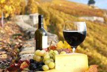 Wine food and vineyards