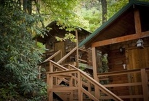 Lodging / A sampling of our spaces and places for lodging, hosting, camping, and exploring.