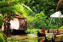 www.MyHouseboats.com / Have you ever gone cruising in a houseboat on the backwaters of Kerala? If you haven't, make sure you do. This one is really a wonderful and unforgettable experience! so we are here, www.MyHouseboats.com Kerala's No.1 online HouseBoats booking website. You can book direct Houseboats, Motorboats, Shikkaraboats, Speedboats, Homestays, Village stays and Resorts