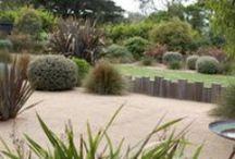 STYLE: Coastal / Informal Native Garden