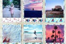 TropiCOOL-Tropical Polaroid Frame / New Polaroid Style Prints, tropical limited edition