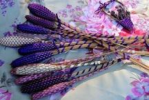 Lavender / by Christine Poko