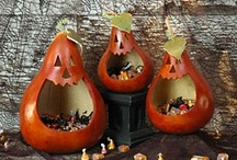 Gourds / by Christine Poko
