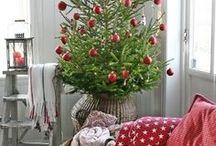 christmas tree / tree