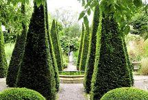 Garten / Garteninspirationen