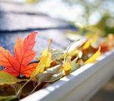Fall Maintenance / Fall maintenance tips that will have your home ready for the winter weather.
