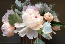 Naturalezas muertas. Flores / by Mari Carmen Bermudez Dominguez