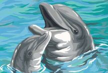 Dolphins / Any and all dolphins / by Shelly Martin