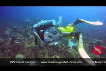 Diving movies / Movies of our 'Relaxed Guided Dives', made by our team