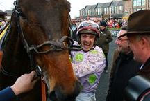Racing moments / by Horse Racing Ireland - goracing.ie