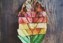 Colour Almighty / Colour palettes, colour schemes, colour ideas and inspirations