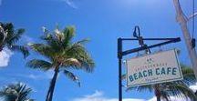 Florida Vibes / Travel around Florida in 11 days!