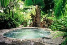 Pool and Backyard Ideas