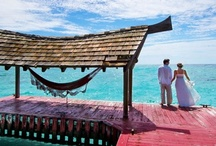 "Destination Weddings / Your destination wedding deserves the magic of the British Virgin Islands.    Set against our spectacular scenery, say ""I Do"" to an intimate seaside wedding at one of our secluded beaches, or at a gala reception on land or at sea.  Our outdoor and indoor venues, professional staff and endless amenities offer every bride and groom the destination wedding of their dreams.  - For more information, please visit our website: www.bvitourism.com"