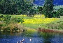 Visit Rancho La Patera!
