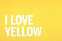 KowhaiGlow® / Bright yellow palette inspired by our new COLORSTEEL® prepainted steel in KowhaiGlow™ colour.