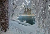 Winter I love / Winter