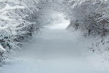 Winter Wonderlands / Beautiful Winters scenes of snow snow snow and more snow! Who can't love a snowy day when you are wrapped up against the cold admiring snow covered trees and landscapes!