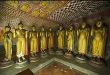 Sri Lanka / Discover things to see and do, places to stay and more when in Sri Lanka