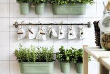 Organizzare le erbe aromatiche in casa / How organize herbs at home: some creative ideas / Come organizzare le erbe aromatiche a casa: tante idee originali e creative da realizzare con il riciclo creativo