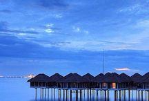 Travel / Future holiday destinations