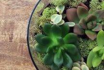 Hazlo tú mismo / Inspiring DIY / Hermosos y fáciles proyectos DIY para un hogar feliz. / Cute and simple DIY for a happy home. Más / More: www.littlehaus.net