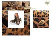 Animal print / Coming soon! Animal Print Espadrilles!!!