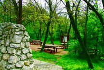 Pákozd-Sukorói Arborétum és Szabadidő Park