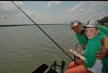 MOHOSZ Agárdi Horgászüdülő