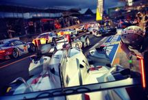 WEC / World Endurance Championship
