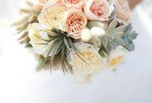 WEDDING // John & Lucas / Ceremony // Zoro Garden, Balboa Park Reception // South Beach Bar & Grill in Ocean Beach
