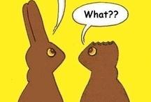 Chocolate Humor