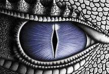 L'art des Dragons