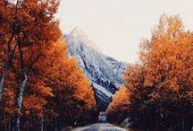 So Just Shop Autumn