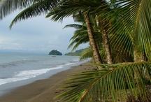 Costa Pacifica, Choco / Le Pacifique, c'est  la forêt tropicale, les mangroves, les plages vierges, une biodiversité surprenante, les baleines à bosse et les communautés noires de descendance africaine.
