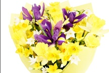 Spring at Eden 4 Flowers / We have some beautiful Spring Flowers and bouquets at Eden 4 Flowers