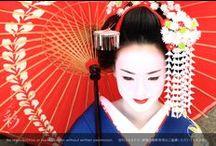 舞妓 Maiko / 舞妓単独 #maiko #kyoto