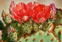 Carol Amos / Carol Amos' realistic oil paintings capture the drama and exuberant colors of the plants and flowers of the Southwest and Midwest.