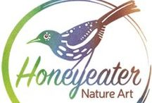 Honeyeater Art School / Workshops at Honeyeater Nature Art in the beautiful Adelaide Hills, South Australia