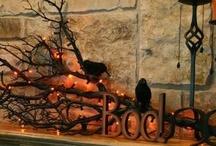 Halloween/ Fall decor / by Maya Crisford