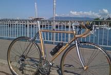 Mybikes / Meine Fahrräder.