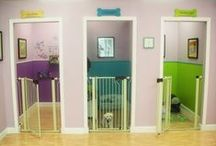 A Room for your Fluffy / The ultimate guide to making a cool dog room, feeding area, or simply to pamper your pooch.