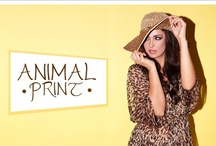 Animal Print / by Dafiti Argentina
