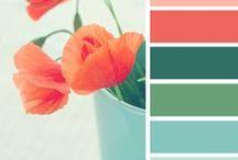 פלטות צבעים / פלטות צבעים נפלאות לכל חדר בבית