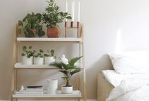 Home Decor Inspo, Minimal and Clean / Simple and clean house decor for minimal and monochromatic lovers.